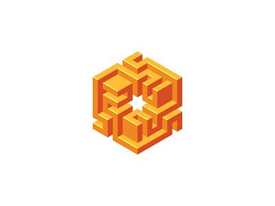 Tridominium Logo shiny intricate labyrinth maze isometric orange hexagon cube symmetrical 3d design geometric vector logomark mark logo