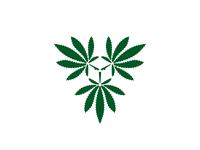 Cannabis Owl
