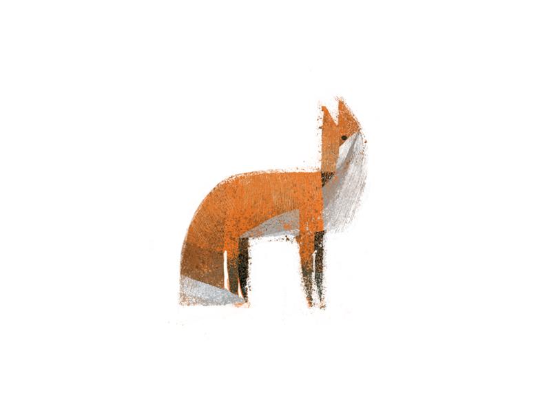 fox texture forest animal fox