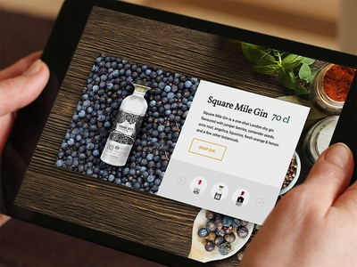 Gin E-commerce Detail