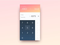 Daily Ui #04. Some ideas about wallet calculator.