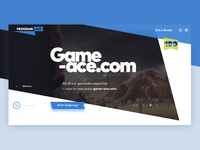 Program Ace Home Page