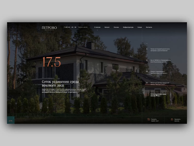 Petrovo-Dalnee home loader animation corporate website web video ux ui typogaphy promotion motion loader landing page interaction homepage animation gif grid concept animation