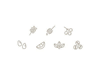 Coffee Tasting Note Iconography almond floral berry honey lavender tasting coffee icons