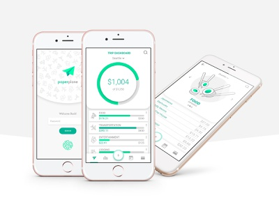 paperplane app travel money budgeting design app ux ui flat branding iconography