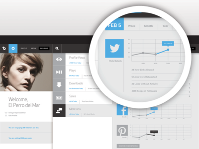 Influence Page UI influence music website social media twitter statistics profile charts infographic ui interface