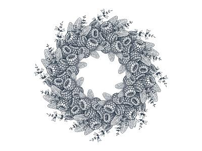 Raspberry and sage botanical art wreath малина графика graphics illustration procreate