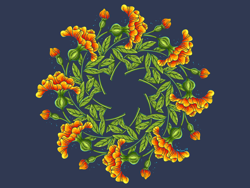 Marigolds flowers vector adobe illustrator botanical illustration mandala marigold art wreath flowers illustration