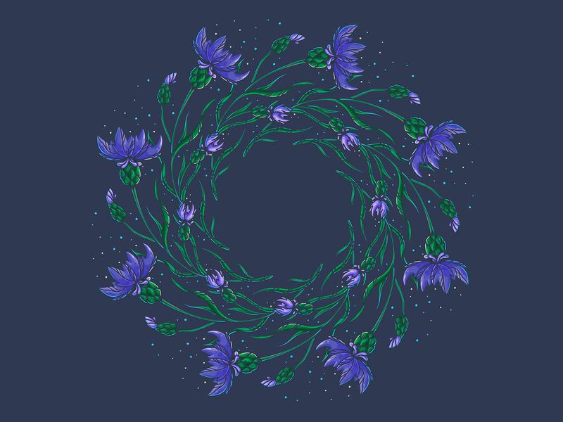 Knapweeds vector adobe illustrator wreath green purple mandala knapweeds botanical art botany flowers illustration