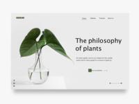 Philosophy of Plant