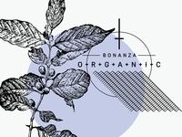 Bonanza Organic | Concept B