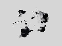 Alejandro Marquez Identity | Logo, Visual