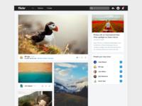 Flickr 4.0 Feed