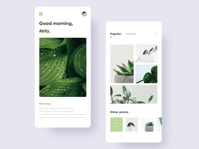 Photo album design gallery green minimal picture camera plant leaf unsplash photo ui app