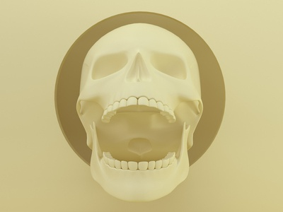 Skull3