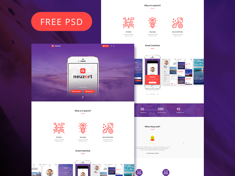 Download Neuzort Landing Page (Free PSD)