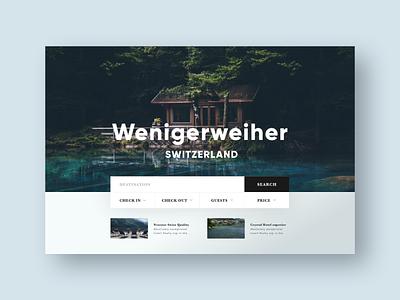 Booking Website typogaphy travel search booking ui design concept website web