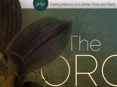 The Orchid (rebound)