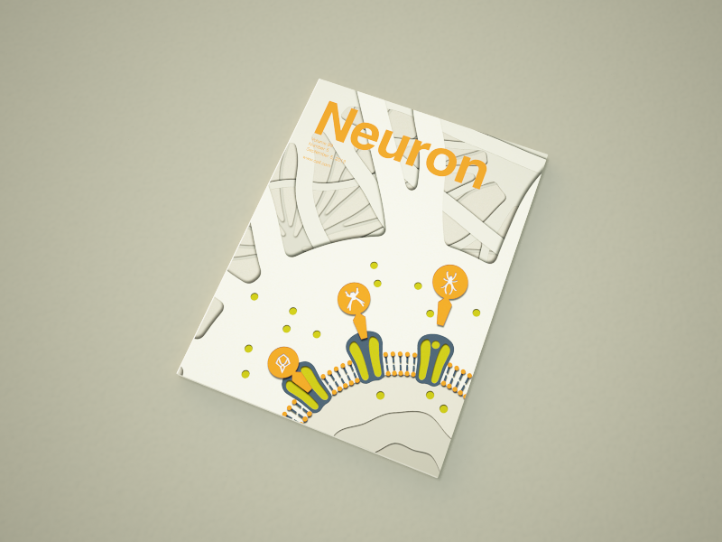 A cover of Neuron cover journal neuron biological biology science design illustration