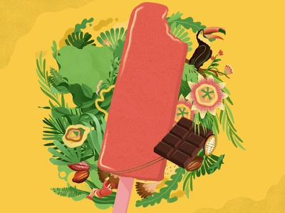 Illustrations for SoFruitty cocoa flowers chocolate toucan plants foliage fruity jungle icecream