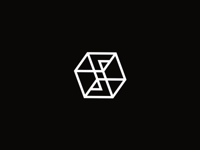 S box arrow letter s box monochrome creative elegant simple modern lineart line unused sale brand branding logotype logo