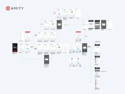 Amity: Sign Up Flow/UX/Logic Design
