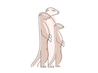 Meerkats design vector drawing illustration