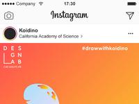 Instagram feed 20173