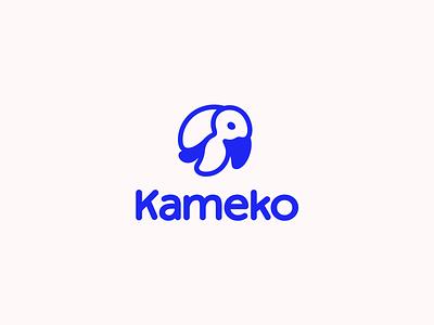 Kameko turtle funy branding vector cute design logo