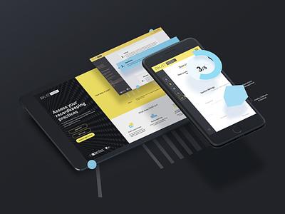 PROV RKAT tool assessment ux ui website web design