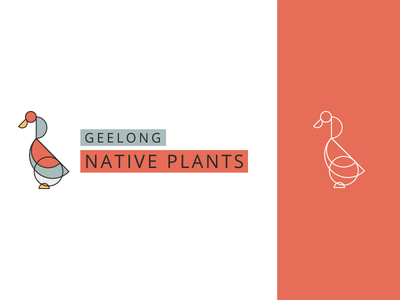 Australian Native Plant Nursery Logo water bird bird natural soft colors illustration line simple branding logo