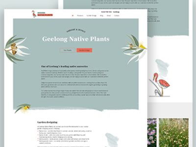 Australian Native Plant Nursery Website ecommerce simple plants natural illustration website homepage logo web design branding