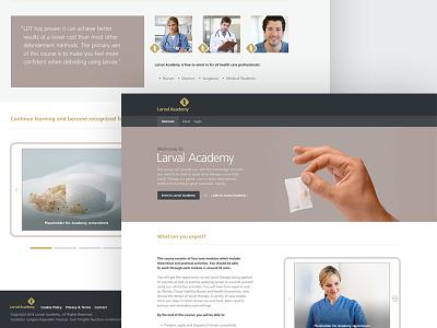 Old Concept Work ux ui web design rwd web website