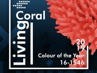 Colour Of The Year 2019