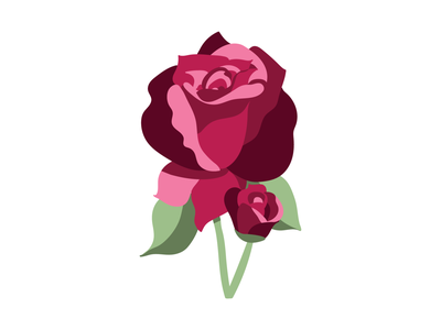 A rose and a half art vector illustration