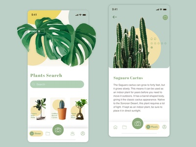 Plants Search App