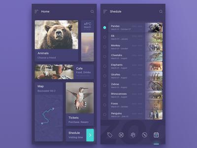 app zoo design ui lobby shedule animals zoo appzoo mobile application app