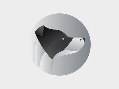 Flash animal dog flash bordercollie collie border gradient illustration