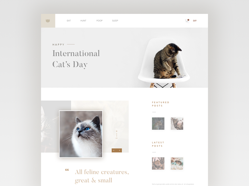 Daily ui no.24 - Happy International Cat's Day layout ux visual designer visual design web designer web design web user interface ui cat cats