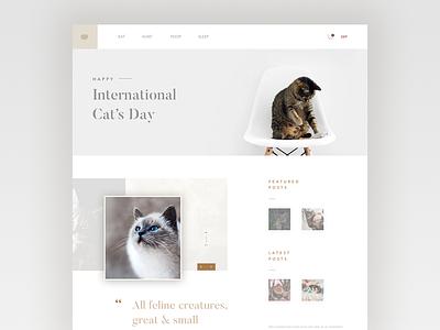 Daily ui no.24 - Happy International Cat's Day layout ux visual designer visual design web designer web design web user interface ui cat cats