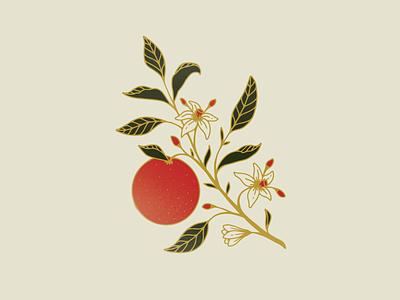 Bloody Orange procreate color palette line work graphic design digital drawing illustration botanical orange bough
