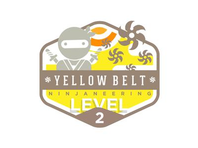 Ninjaneering badge level 2