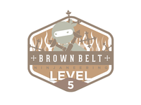 Ninjaneering badge level 5