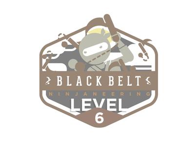 Ninjaneering badge level 6