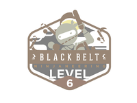 Ninjaneering badge level 6
