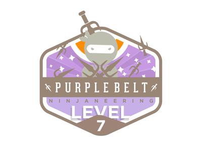 Ninjaneering badge level 7