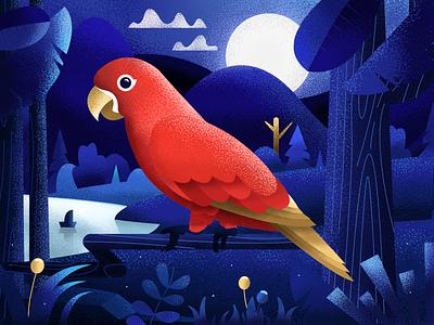 The Night Parrot moon flower tree nature forest night illustration animal drawing bird