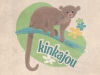 Kinkajou