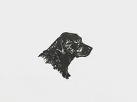 Letterpress dog icon