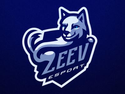 Zeev esport